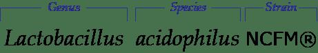 Lactobacillus taxonomy diagram
