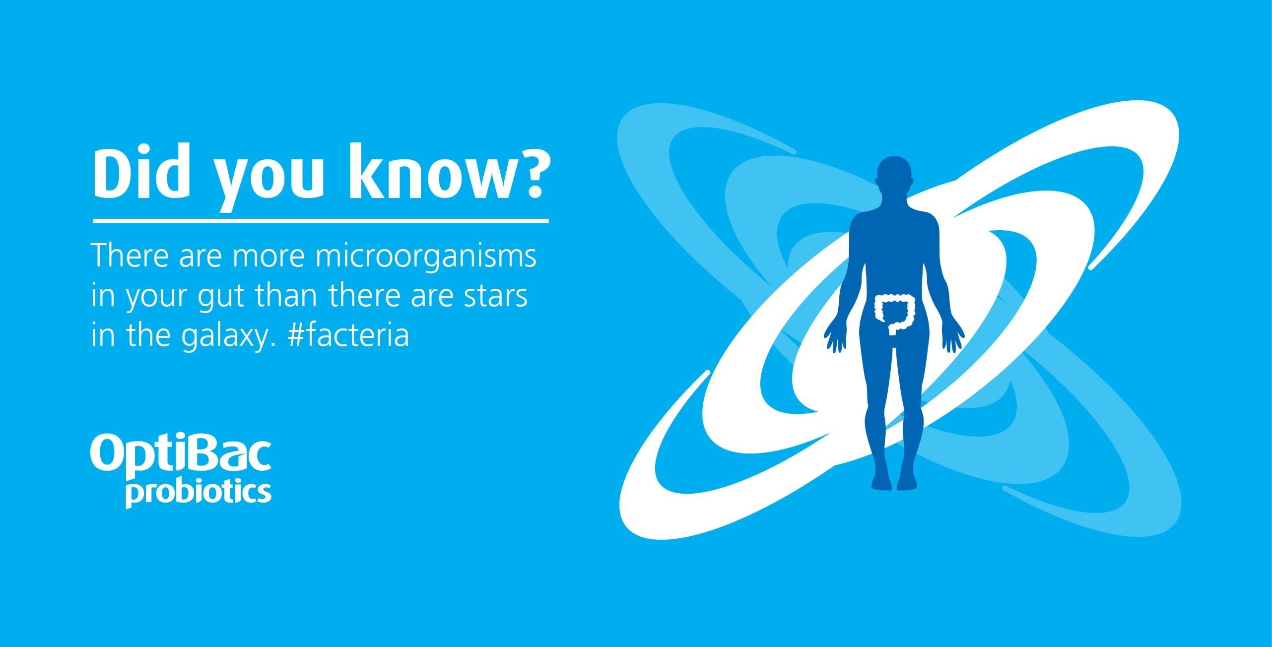 Fact about bacteria and the galaxy