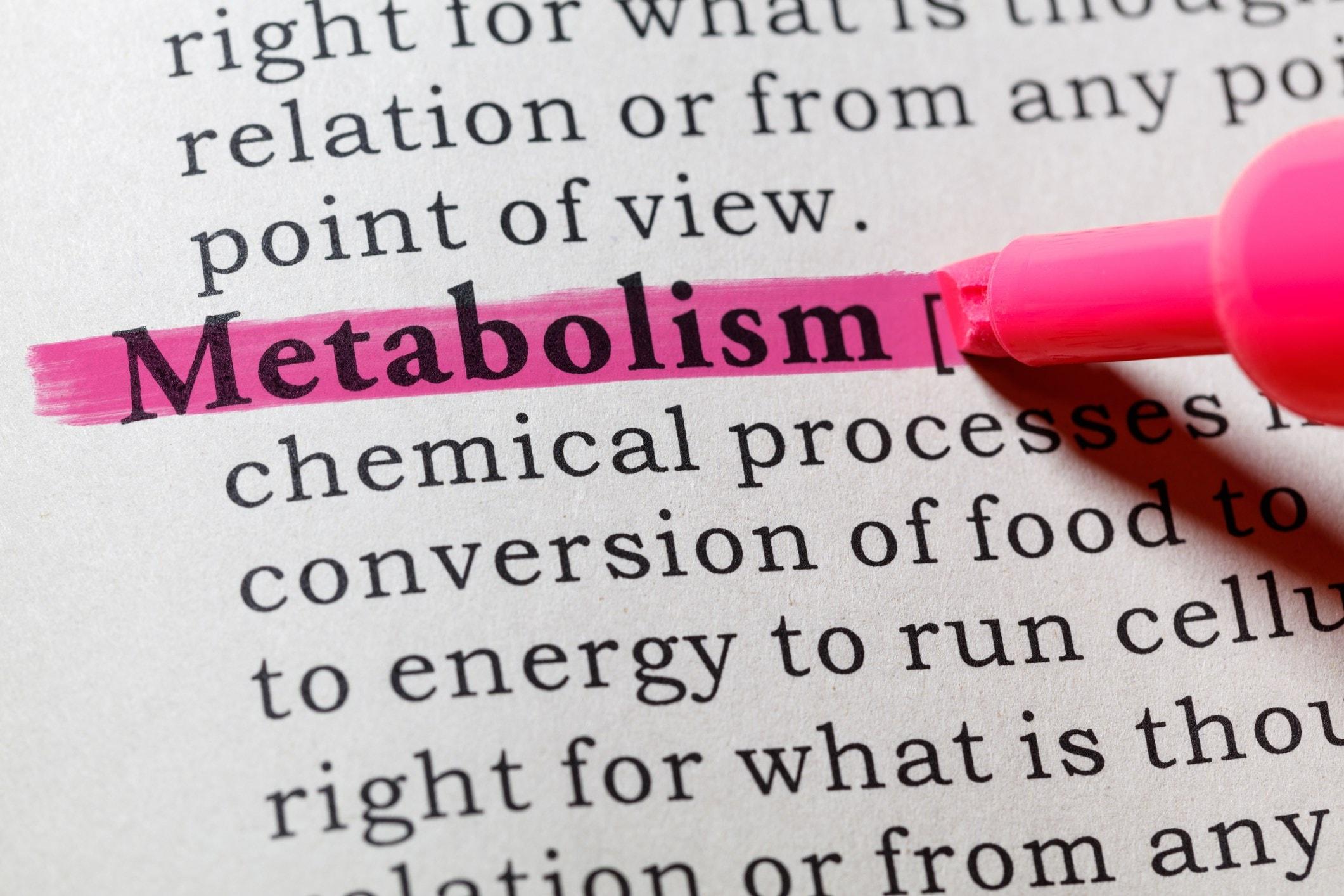 word metabolism highlighted