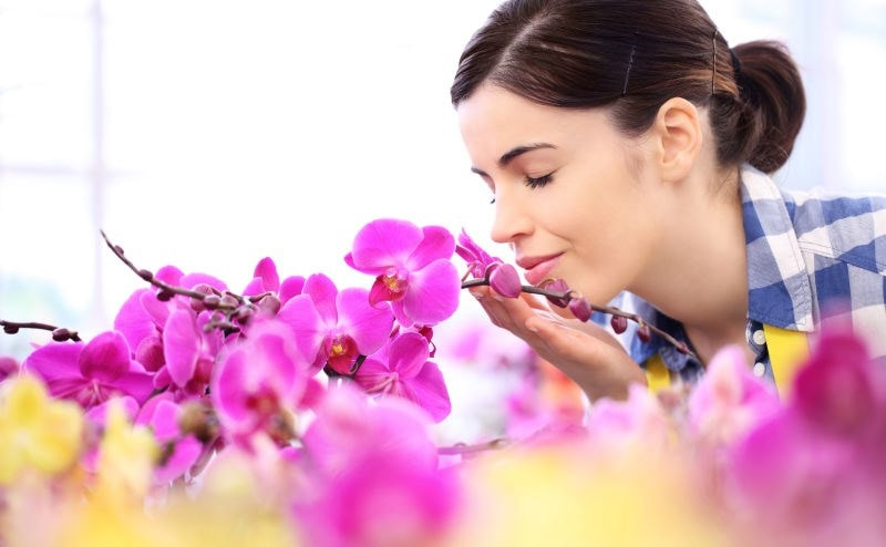 woman holding orchid
