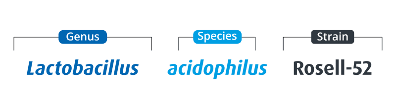 Genus, species, strain for Lactobacillus acidophilus Rosell-52