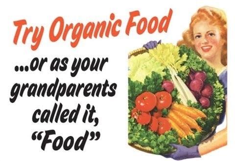 Organic food graphic