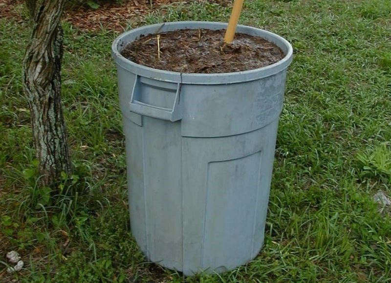 bucket of Manure Tea