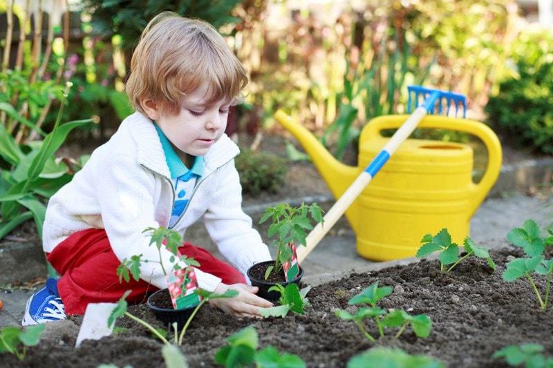 child laying plants