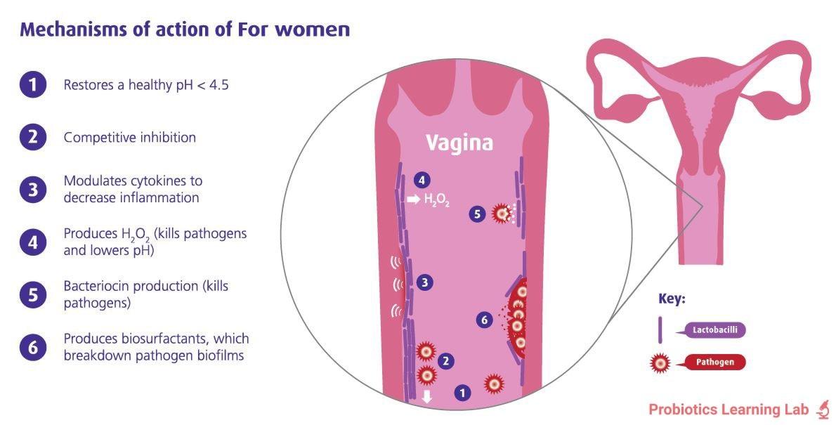 Mechanisms of action 'For Women'