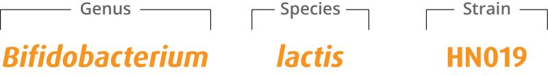 Taxonomic breakdown of B. lactis HN019