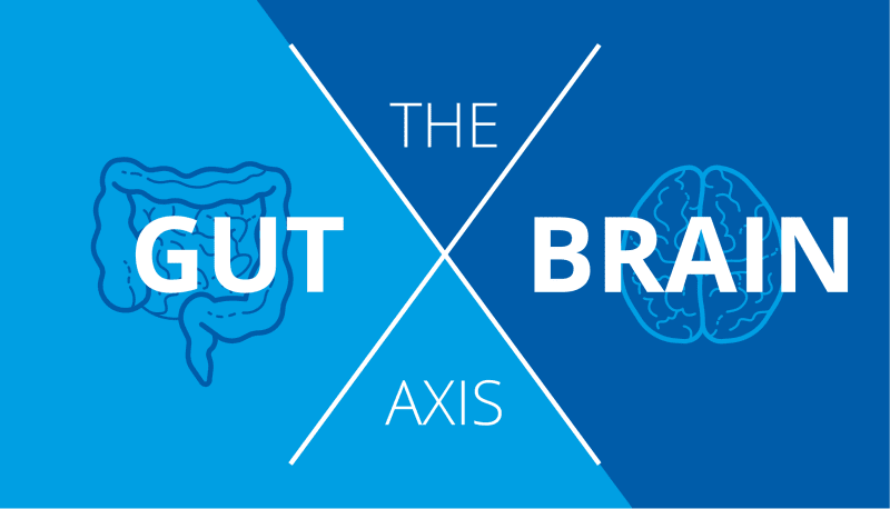 The gut brain axis poster